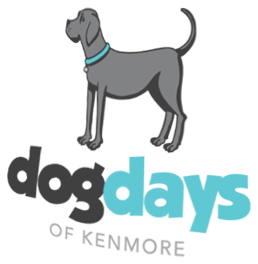 Dog Days of Kenmore
