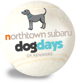 Northtown Subaru Dog Days of Kenmore Festival - Buffalo NY